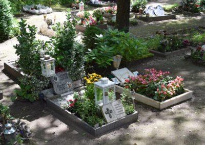 Tierfriedhof-Jenfeld - Tierkrematorium Hamburg